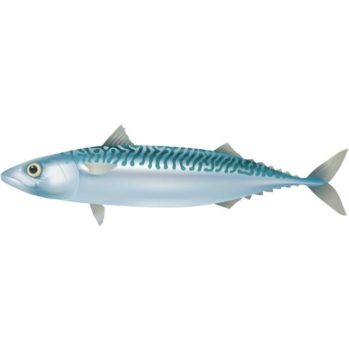 アジなどの魚の骨が刺さって取れないときの対応