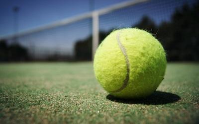 テニスのボールボーイ・ボールガールは何をしているのか