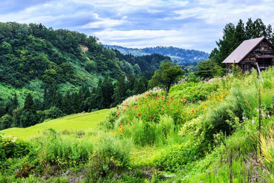登山を始めるならこの山【東京近郊】